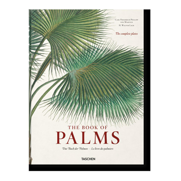 Picture of THE BOOK OF PALMS