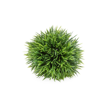 Picture of SPIKE GRASS BALL, 5